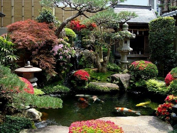 Как создать сад в китайском стиле?