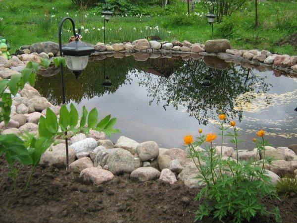 Особенности создания садовых прудов и фонтанов