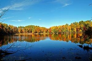 Хотите построить уютный домик на берегу озера?