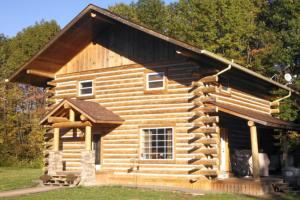 «За» и «против» деревянного домовладения.