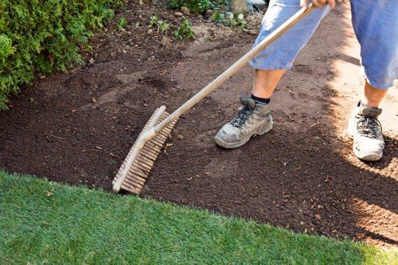Как правильно посадить газонную траву своими руками?