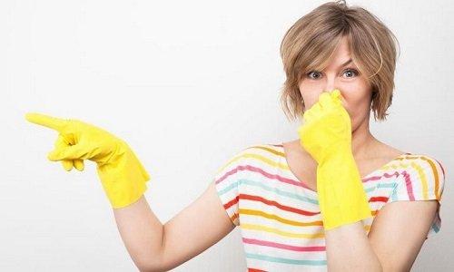 5 способов избавиться от запаха животных в вашей квартире