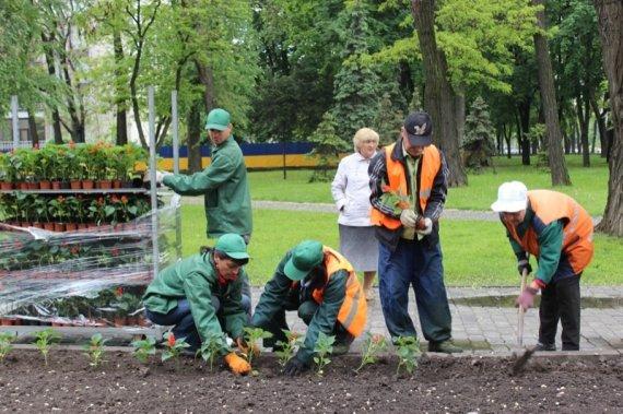 Порядок работ по благоустройству и озеленению участка